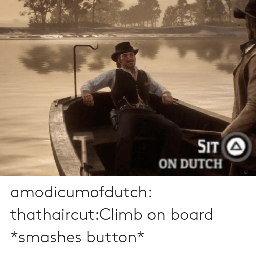 Target, Tumblr, and Blog: SIT A  ON DUTCH amodicumofdutch:  thathaircut:Climb on board *smashes button*