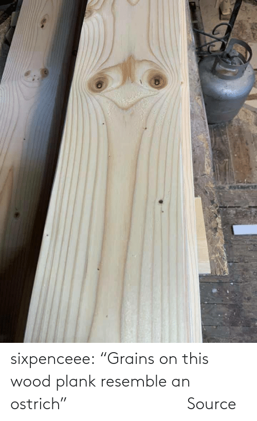 "source: sixpenceee:   ""Grains on this wood plank resemble an ostrich""                             Source"