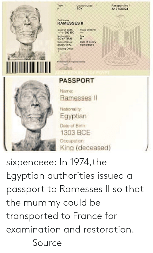 Could: sixpenceee:  In  1974,the Egyptian authorities issued a passport to Ramesses II so that  the mummy could be transported to France for examination and  restoration.                 Source
