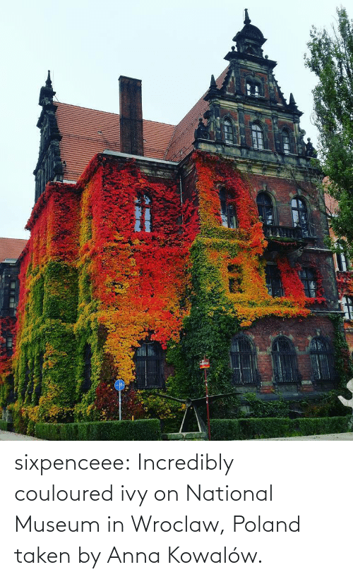 Https Www Facebook Com: sixpenceee: Incredibly couloured ivy on  National Museum in Wroclaw, Poland taken by  Anna Kowalów.