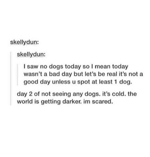Bad, Bad Day, and Dogs: skellydun:  skellydun:  I saw no dogs today so I mean today  wasn't a bad day but let's be real it's not a  good day unless u spot at least 1 dog.  day 2 of not seeing any dogs. it's cold. the  world is getting darker. im scared.