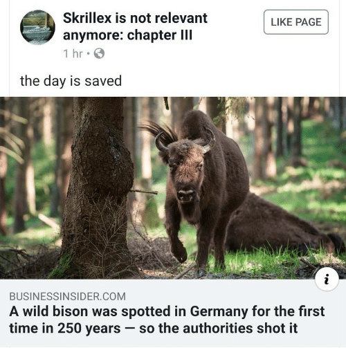 Skrillex, Germany, and Time: Skrillex is not relevant  anymore: chapter lII  LIKE PAGE  the day is saved  BUSINESSINSIDER.COM  A wild bison was spotted in Germany for the first  time in 250 years-so the authorities shot it