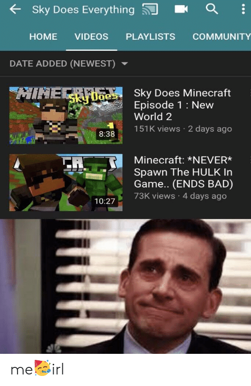 🅱️ 25+ Best Memes About Sky Does Minecraft | Sky Does