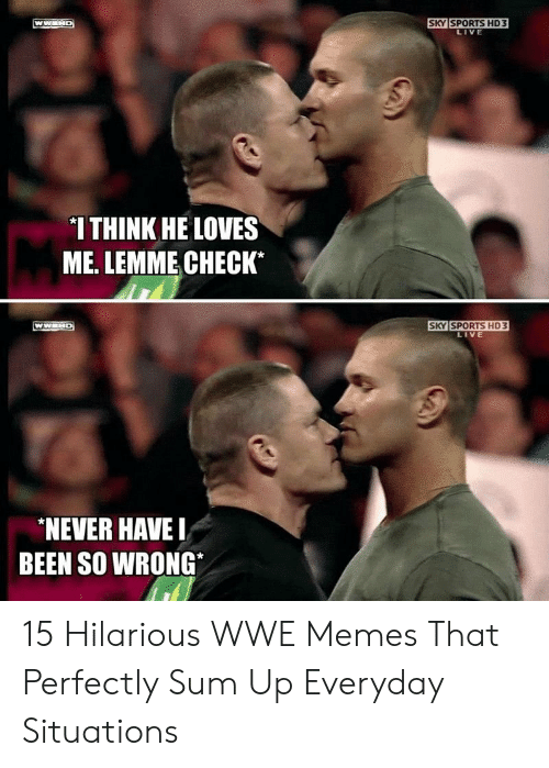Memes, Sports, and World Wrestling Entertainment: SKY SPORTS HD3  LIVE  *I THINK HE LOVES  ME. LEMME CHECK*  SKY SPORTS HD 3  LIVE  NEVER HAVE  BEEN SO WRONG 15 Hilarious WWE Memes That Perfectly Sum Up Everyday Situations