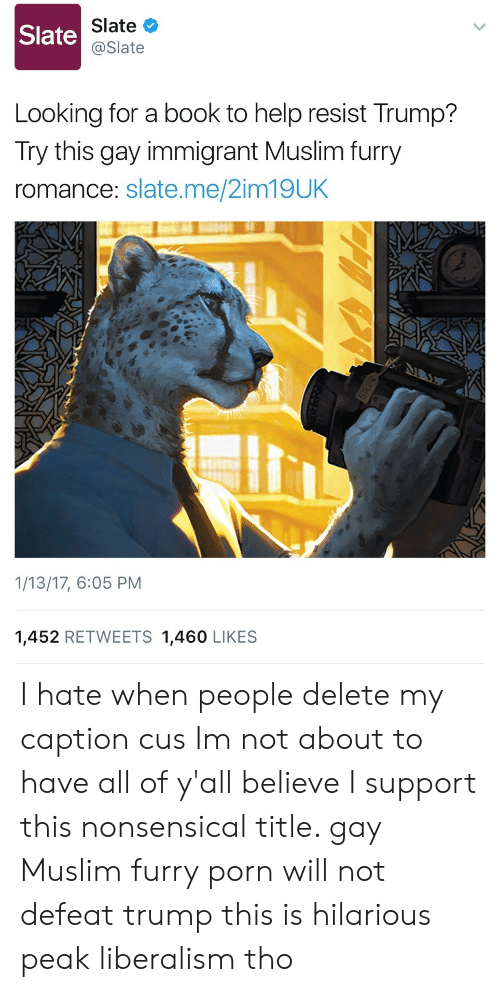 nonsensical: Slate  Slate  @Slate  Looking for a book to help resist Trump?  Try this gay immigrant Muslim furry  romance: slate.me/2im19UK  1/13/17, 6:05 PM  1,452 RETWEETS 1,460 LIKES I hate when people delete my caption cus Im not about to have all of y'all believe I support this nonsensical title. gay Muslim furry porn will not defeat trump this is hilarious peak liberalism tho