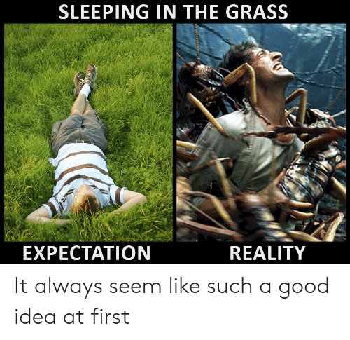 expectation: SLEEPING IN THE GRASS  EXPECTATION  REALITY It always seem like such a good idea at first