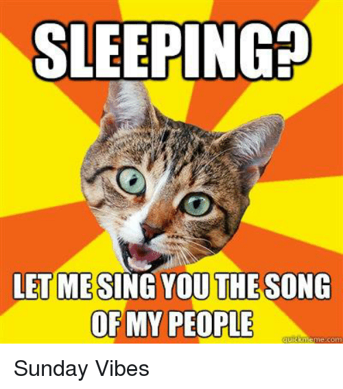 People Memes: SLEEPING  THE SONG  DEMY PEOPLE  meme com Sunday Vibes