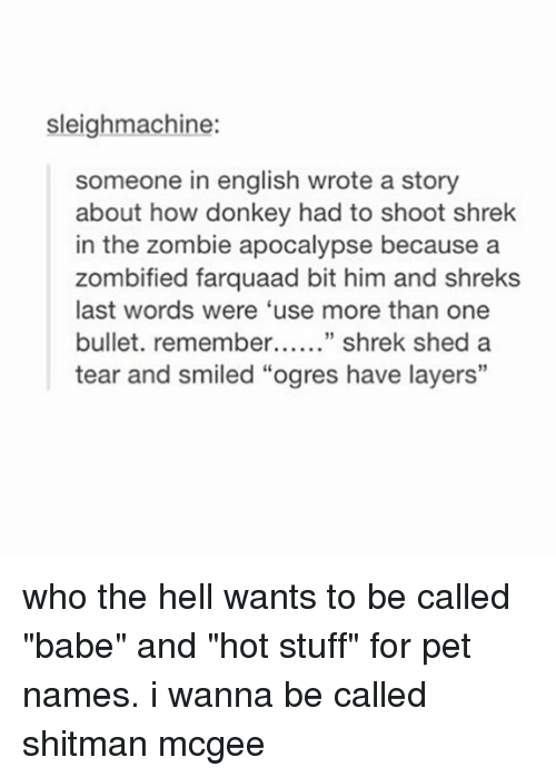 "Donkey, Shrek, and Stuff: sleighmachine:  someone in english wrote a story  about how donkey had to shoot shrek  in the zombie apocalypse because a  zombified farquaad bit him and shreks  last words were 'use more than one  bullet. remember shrek shed a  tear and smiled ""ogres have layers"" who the hell wants to be called ""babe"" and ""hot stuff"" for pet names. i wanna be called shitman mcgee"