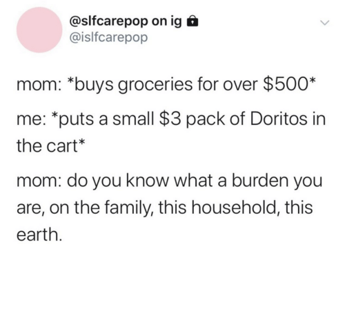 the family: @slfcarepop on ig  @islfcarepop  mom: *buys groceries for over $500*  me: *puts a small $3 pack of Doritos in  the cart*  mom: do you know what a burden you  are, on the family, this household, this  earth