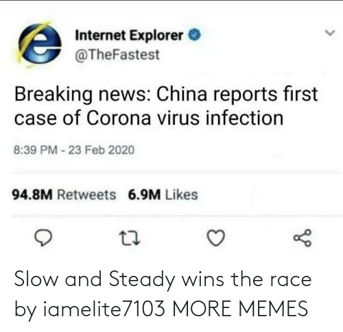 wins: Slow and Steady wins the race by iamelite7103 MORE MEMES