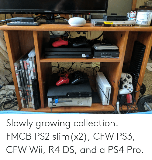 wii: Slowly growing collection. FMCB PS2 slim(x2), CFW PS3, CFW Wii, R4 DS, and a PS4 Pro.