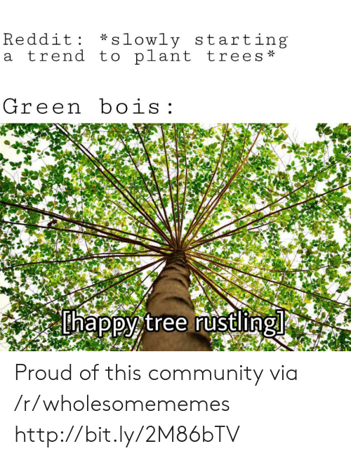 Community, Reddit, and Http: *slowly starting  Reddit  a trend to plant trees  Green bois  thappy tree rustling Proud of this community via /r/wholesomememes http://bit.ly/2M86bTV
