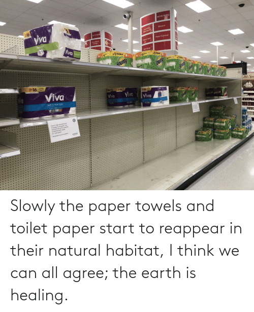 Start: Slowly the paper towels and toilet paper start to reappear in their natural habitat, I think we can all agree; the earth is healing.