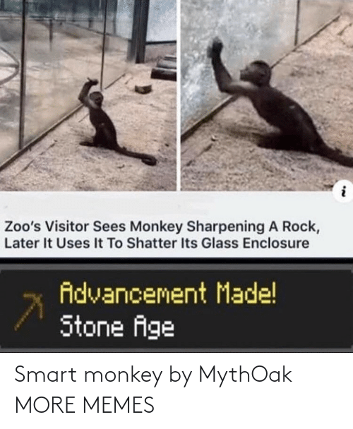 smart: Smart monkey by MythOak MORE MEMES