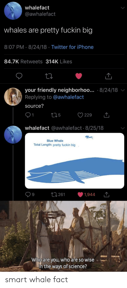 Smart, Whale, and Fact: smart whale fact