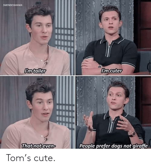 not even: SMENDESMANIA  Im taller  Om cuter  People prefer dogs not giraffe  That not even- Tom's cute.