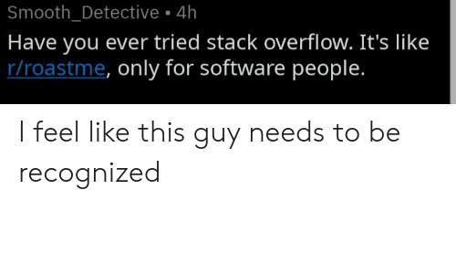 Recognized: Smooth_Detective 4h  Have you ever tried stack overflow. It's like  r/roastme, only for software people. I feel like this guy needs to be recognized