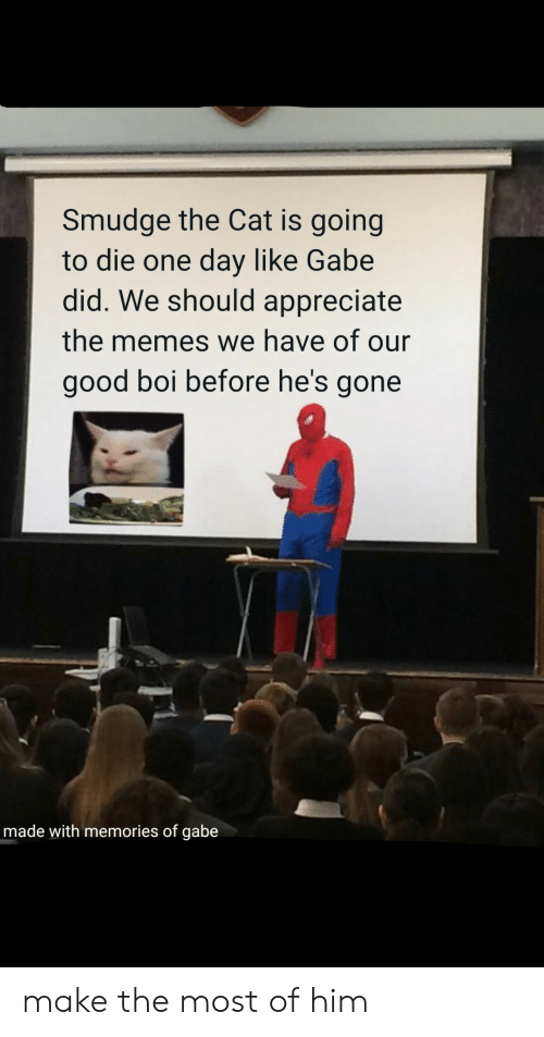 Memes, Appreciate, and Good: Smudge the Cat is going  to die one day like Gabe  did. We should appreciate  the memes we have of our  good boi before he's gone  made with memories of gabe make the most of him
