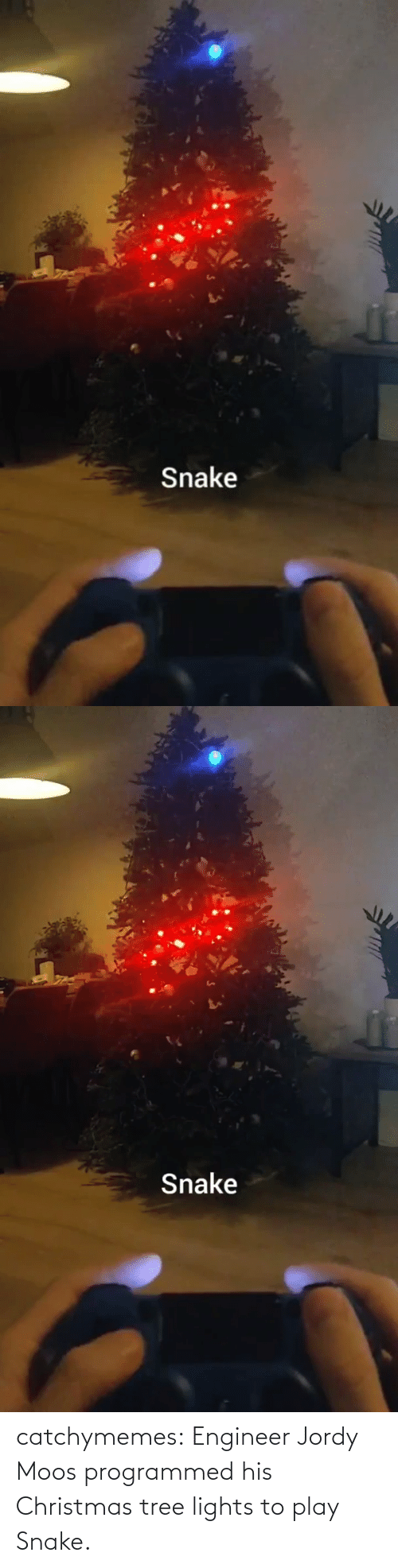 Programmed: Snake   Snake catchymemes:  Engineer Jordy Moos programmed his Christmas tree lights to play Snake.