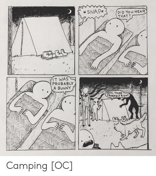 hear that: SNAP*  PID You HEAR  THAT?  IT WAS  PROBABLY  A BUNNY  YEAH, YOURE  PROBABLY RIGHT  ACCILLTT Camping [OC]