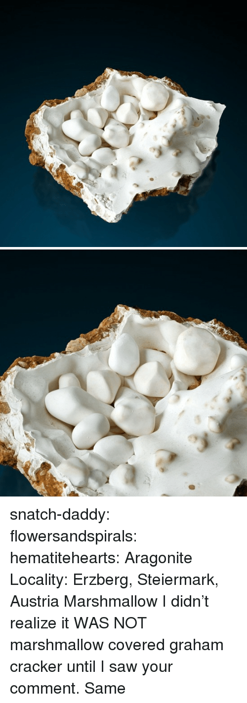 Saw, Tumblr, and Blog: snatch-daddy:  flowersandspirals:  hematitehearts:  Aragonite   Locality: Erzberg, Steiermark, Austria     Marshmallow  I didn't realize it WAS NOT marshmallow covered graham cracker until I saw your comment.  Same