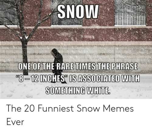 Memes, Snow, and White: SNOW  OETE RARE TIMES THEPHRASE  8-12INCHES IS ASSOCIATED WITH  SOMETHING WHITE The 20 Funniest Snow Memes Ever