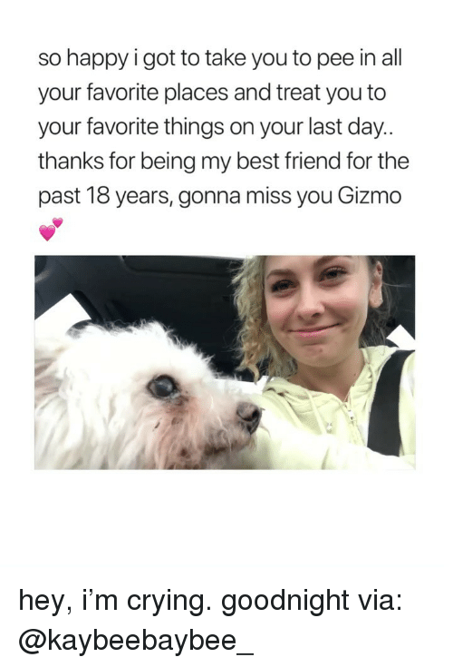 Best Friend, Crying, and Best: so happy i got to take you to pee in all  your favorite places and treat you to  your favorite things on your last day  thanks for being my best friend for the  past 18 years, gonna miss you Gizmo hey, i'm crying. goodnight via: @kaybeebaybee_