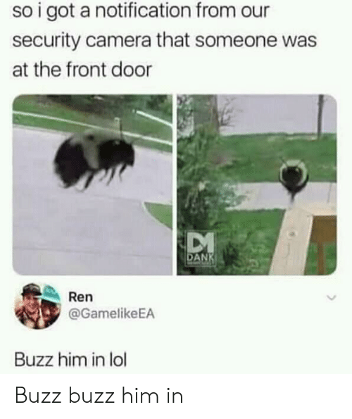 Lol, Camera, and Got: so i got a notification from our  security camera that someone was  at the front door  AN  Ren  @GamelikeEA  Buzz him in lol Buzz buzz him in