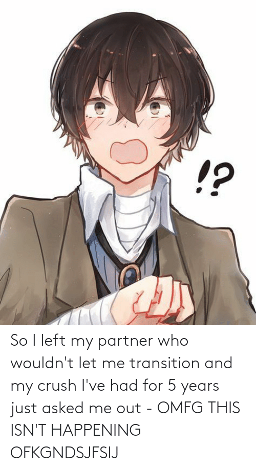 Partner: So I left my partner who wouldn't let me transition and my crush I've had for 5 years just asked me out - OMFG THIS ISN'T HAPPENING OFKGNDSJFSIJ