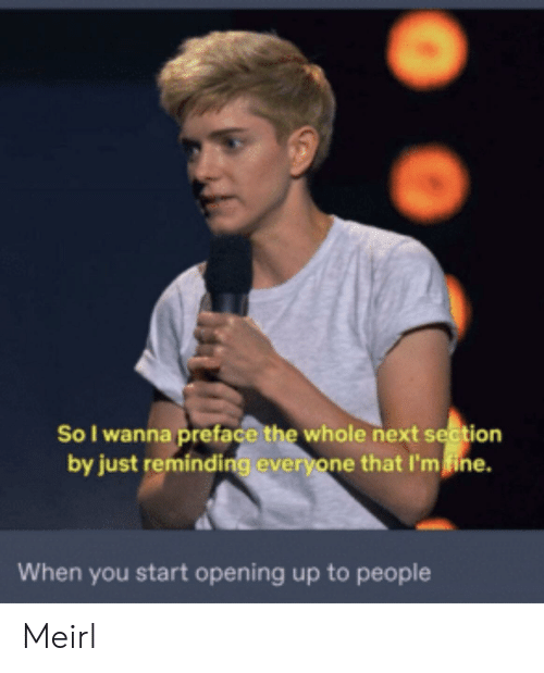 MeIRL, Next, and You: So I wanna preface the whole next section  by just reminding everyone that I'mfine.  When you start opening up to people Meirl