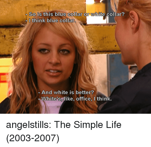 simple life: So is this blue collar or white collar?  Ithink blue collar.  And white is better?  White's, like, office, I think, angelstills: The Simple Life (2003-2007)