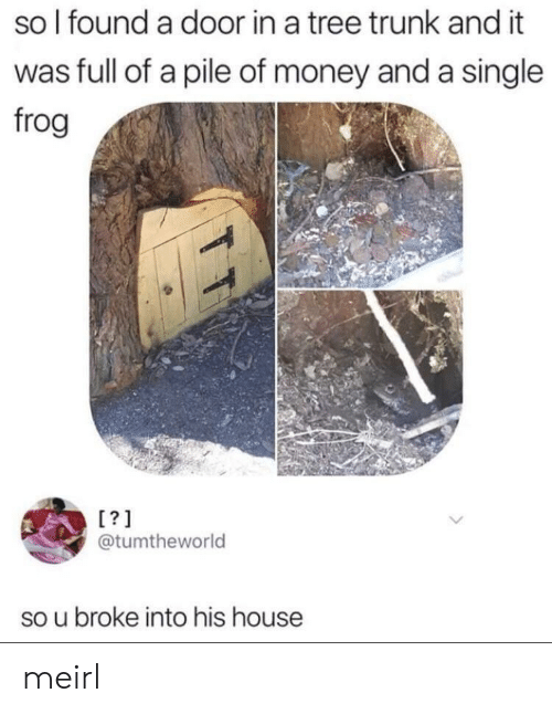 Money, House, and Tree: so l found a door in a tree trunk and it  was full of a pile of money and a single  frog  [?1  @tumtheworld  so u broke into his house meirl