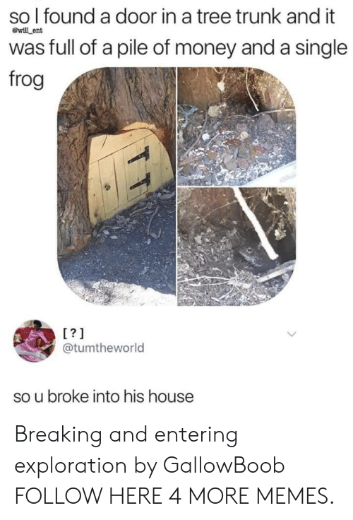 exploration: so l found a door in a tree trunk and it  was full of a pile of money and a single  frog  @will ent  L?1  @tumtheworld  so u broke into his house Breaking and entering exploration by GallowBoob FOLLOW HERE 4 MORE MEMES.