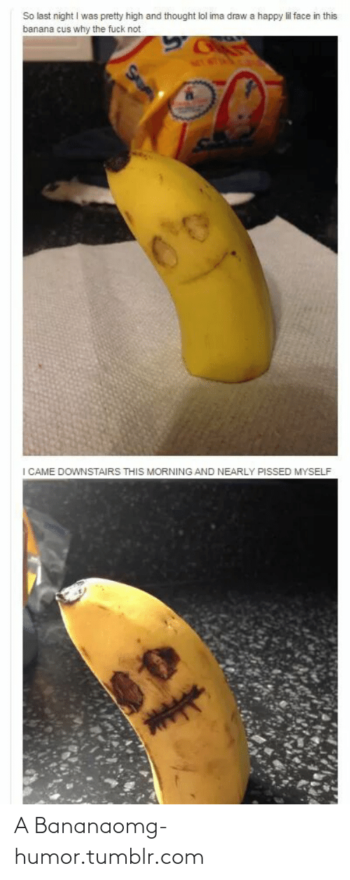 Why The Fuck Not: So last night I was pretty high and thought lol ima draw a happy lil face in this  banana cus why the fuck not  I CAME DOWNSTAIRS THIS MORNING AND NEARLY PISSED MYSELF A Bananaomg-humor.tumblr.com