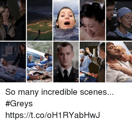 Memes, 🤖, and Greys: So many incredible scenes... #Greys https://t.co/oH1RYabHwJ