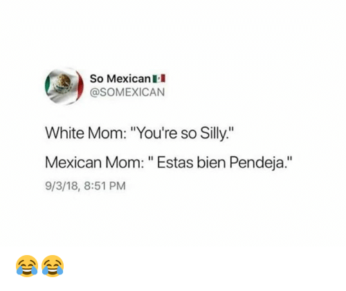 "Memes, White, and Mexican: So Mexican I  @SOMEXICAN  White Mom: ""You're so Silly.""  Mexican Mom: "" Estas bien Pendeja.""  9/3/18, 8:51 PM 😂😂"