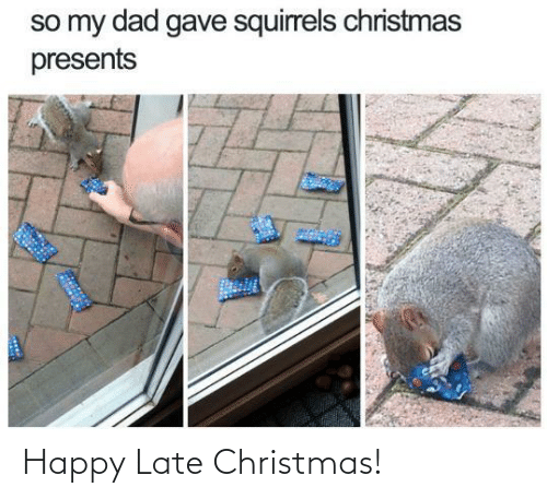 My Dad: so my dad gave squirrels christmas  presents Happy Late Christmas!