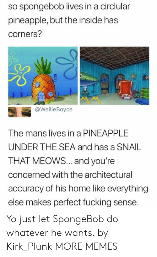 Dank, Fucking, and Memes: so spongebob lives in a circlular  pineapple, but the inside has  corners?  @WellieBoyce  The mans lives in a PINEAPPLE  UNDER THE SEA and has a SNAIL  THAT MEOWS... and you're  concerned with the architectural  accuracy of his home like everything  else makes perfect fucking sense. Yo just let SpongeBob do whatever he wants. by Kirk_Plunk MORE MEMES
