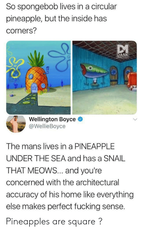 pineapples: So spongebob lives in a circular  pineapple, but the inside has  corners?  DANK  MEMEOLOGY  DANK  MEMICIOG  Wellington Boyce  @WellieBoyce  The mans lives in a PINEAPPLE  UNDER THE SEA and has a SNAIL  THAT MEOWS... and you're  concerned with the architectural  accuracy of his home like everything  else makes perfect fucking sense. Pineapples are square ?