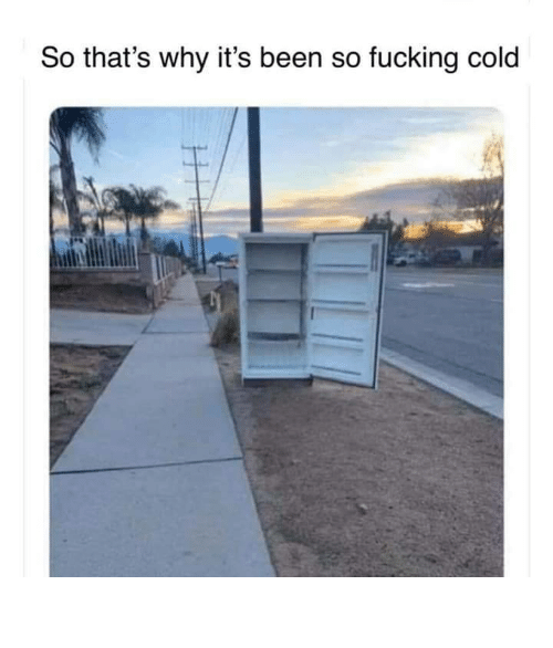 Cold: So that's why it's been so fucking cold So fucking cold