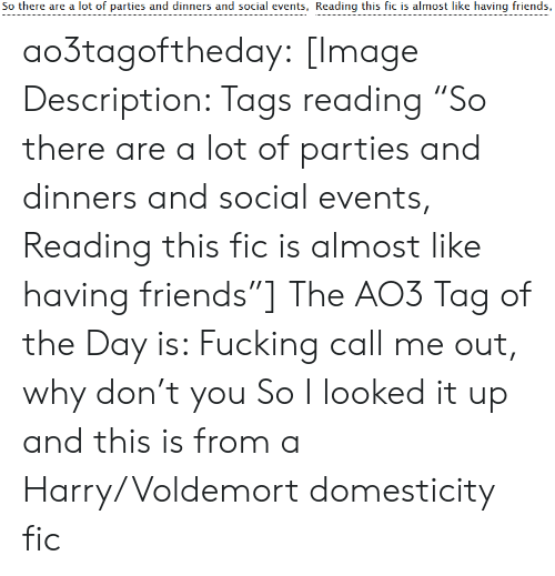 "tags: So there are a lot of parties and dinners and social events, Reading this fic is almost like having friends, ao3tagoftheday:  [Image Description: Tags reading ""So there are a lot of parties and dinners and social events, Reading this fic is almost like having friends""]  The AO3 Tag of the Day is: Fucking call me out, why don't you   So I looked it up and this is from a Harry/Voldemort domesticity fic"