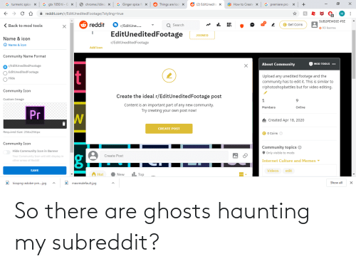 Haunting: So there are ghosts haunting my subreddit?