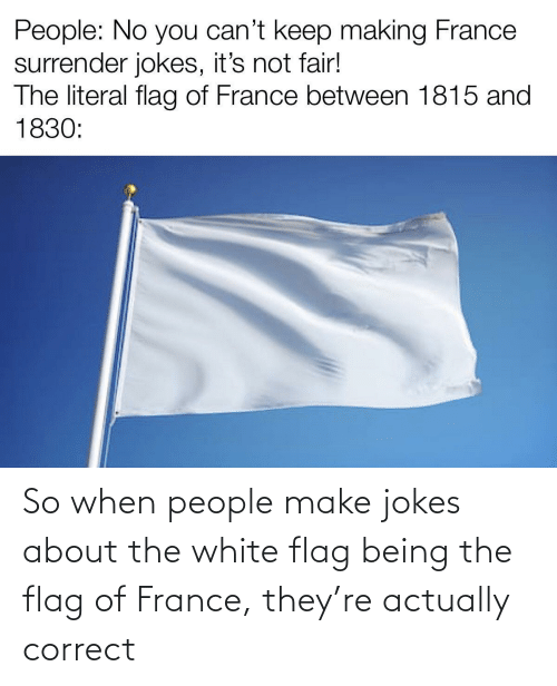 White: So when people make jokes about the white flag being the flag of France, they're actually correct