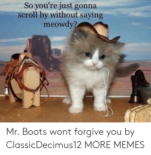 Forgive You: So you're just gonna  scroll by without saying  meowdy? Mr. Boots wont forgive you by ClassicDecimus12 MORE MEMES