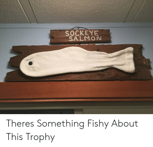 Something Fishy: SOCKEYE  SALMON Theres Something Fishy About This Trophy