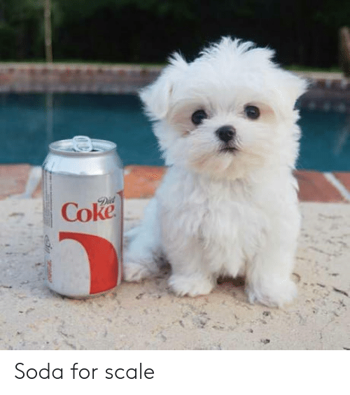 For Scale: Soda for scale