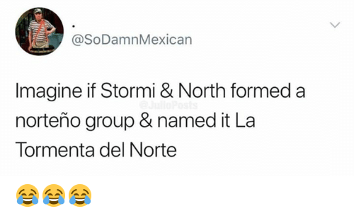Memes, 🤖, and Group: @SoDamnMexican  Imagine if Stormi & North formed a  norteño group & named it La  Tormenta del Norte 😂😂😂