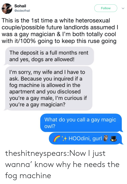 Anaconda, Dogs, and Future: Sohail  @sideofhail  Follow  This is the 1st time a white heterosexual  couple/possible future landlords assumed I  was a gay magician & I'm both totally cool  with it/100% going to keep this ruse going   The deposit is a full months rent  and yes, dogs are allowed!  I'm sorry, my wife and I have to  ask. Because you inquired if a  fog machine is allowed in the  apartment and you disclosed  you're a gay male, I'm curious if  you're a gay magician?  What do you call a gay magic  owl?  HOOdini, gurl theshitneyspears:Now I just wanna' know why he needs the fog machine