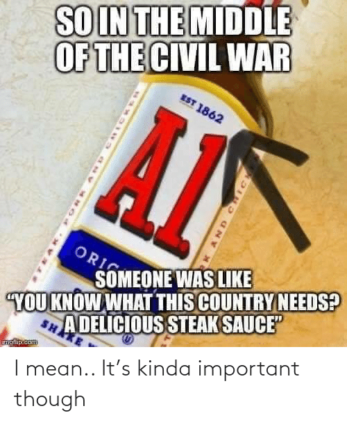 "war: SOIN THE MIDDLE  OF THE CIVIL WAR  EST 1862  ORI  SOMEONE WAS LIKE  A DELICIOUS STEAK SAUCE""  SHAKE  YOU KNOW WHAT THIS COUNTRY NEEDS?  inglip.com  AND CHIC I mean.. It's kinda important though"