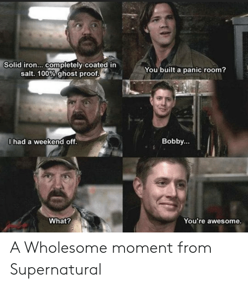 panic: Solid iron... completely coated in  salt. 100% ghost proof  You built a panic room?  0had a weekend off.  Bobby...  What?  You're awesome. A Wholesome moment from Supernatural